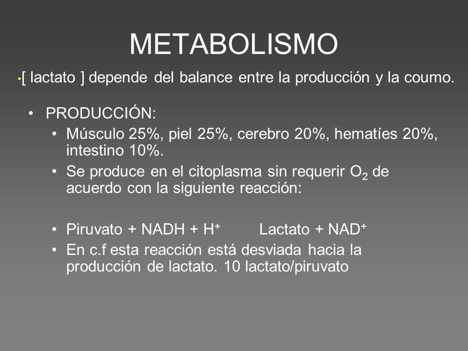 METABOLISMO [ lactato ] depende del balance entre la producción y la coumo. PRODUCCIÓN: